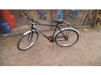 Hawk Woodland mans Hybrid bike. cycle. mens bicycle