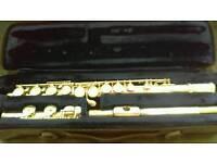 Trevor J James flute 10x