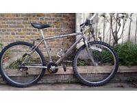 Chrome Falcon bike