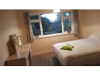 Large double room to rent in Oakwood