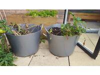 2x 40L garden tubs