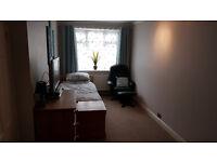 single room with en-suite shower room to rent