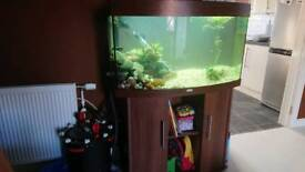 Juwel Vision 180 with Fluval FX6 and all the rest