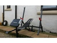 Squat rack bench press preacher curl and incline bench