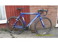 VITTESSE SPRINT 21sp RACING BIKE LARGE 23in/58cm ALLOY FRAME CLEAN COND
