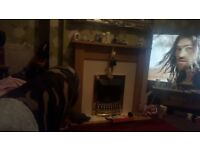 Electric fire with surround for sale or SWAP for Adams Surround