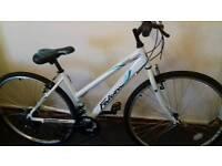 Ladies falcon fresco bike