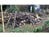 Free Logs Cardiff