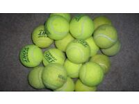 Qty 20 used Tennis Balls - Ideal for Dogs