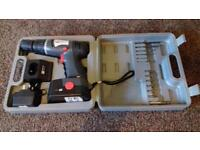 Pro 18 Volt Hammer drill