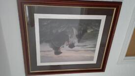 nigel hemmings framed print for sale £80