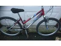 RALEIGH LADIES MOUNTAIN BIKE 16 INCH FRAME 26 INCH WHEEL'S, 18 GEARS GOOD TO GO