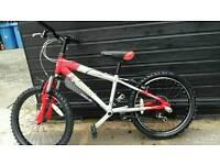 Kids reebok bike