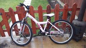 Pink Bike £60