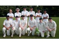 Cricket players wanted - OctopusCC (Home ground Alexandra Palace)