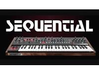 Sequential Circuits Prophet 6 Dave Smith I as new under warranty