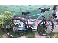 Falcon enzo mounting bike