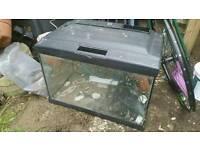 60l. fish tank for sale+internal filter pomp