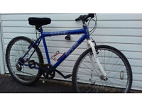 MANS ATB & HYBRID BIKES &BELL,CAGE -S / M SIZE £40