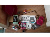 Cat/kitten starter pack