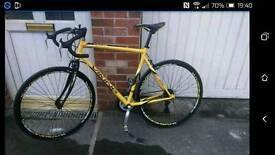 Men's Viking Pro Racing Bike 56cm