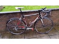 Trek 1.2 Road Bike 56cm