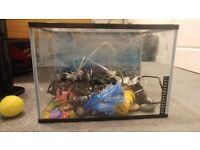 Tropical Fish Tank with Pump, Heater, Filter, Light, Temperature Gauge and MORE!