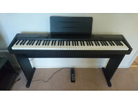 Keyboard: Casio CDP-100 88-note weighed hammer action digital piano