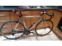 Ciocc Road Racing Bike - Vintage 56cm Frame, Italian retro