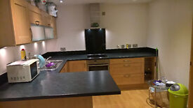 Flat to rent in Sheffield City Centre! Give 200 pounds cash if you sign a contract!!!!