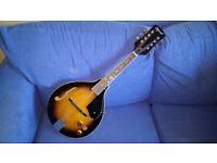 Electro Acoustic Mandolin Ozark 2077 in excellent condition