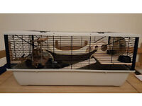 Hamster, Rat, Gerbill, mouse, Degu Cage (Small animals) (New mixed with used items)