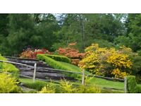 Successful gardening business for sale