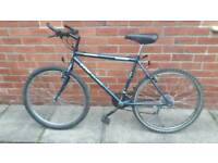 Adults Universal Bike 19 inch frame 26 inch wheels Good working condition and ready to ride