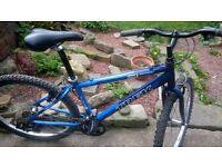 trek series 3 mountain bike