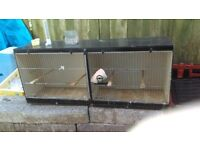 budgie or canary cage for breeding