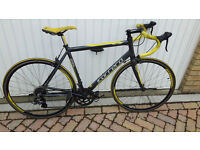 Carerra Road Bike. Limted Edition £200