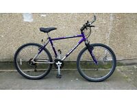 Men's Raleigh Activator bike in good condition - delivery available