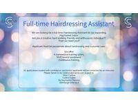 Hairdressing Apprenticeship