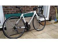 Specialized Allez Road Bike (52cm)