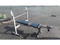 BODY SOLID BFOB10 WEIGHTS BENCH