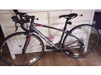 SPECIALIZED Dolce 48cm ladies road bike. 12 months old, Mint condition