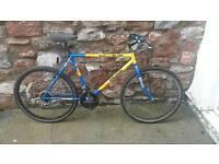 Vintage retro RALEIGH mountain bike team cycle.