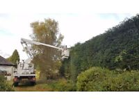 4x4 Cherry Picker Unimog with Operator Fully Trained 13.5m Access Height Tree Felling Work at height