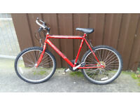 Bike with helmet, lock, and tyre pump - low price for quick sale