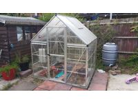 GREENHOUSE VERY GOOD CONDITION