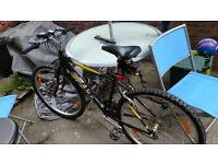 Bike for Sale from 9. July