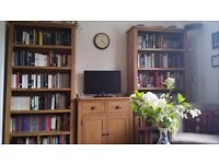 Single academic looking for 1-bed flat