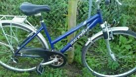 Bike ladies RALEIGH BOGNOR REGIS CAN DELIVAR
