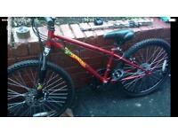Kids Mountain Bike-£50 used twice COLLECTION ONLY s5